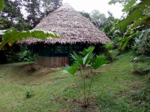 Ayahuasca Ceremony House - Maloka